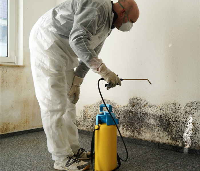 specialist in PPE combating mold in an apartment