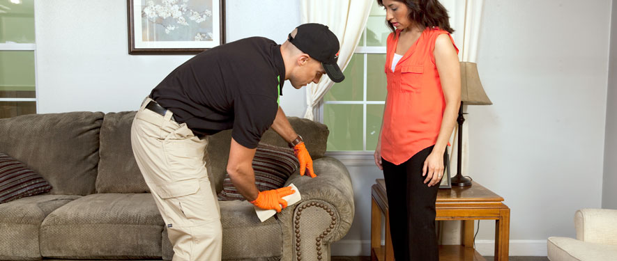 Murfreesboro, TN carpet upholstery cleaning